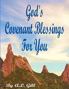 Book Cover for God's Covenant Blessings for You