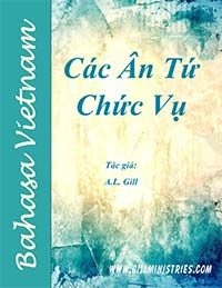 11 Cover for Vietnamese MiG Manual