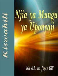 3-Cover for Swahili Healing Manual